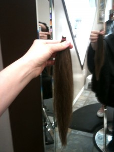 Donate Locks Love on Donate This Ponytail To A Good Cause  And I   Ve Heard Locks Of Love