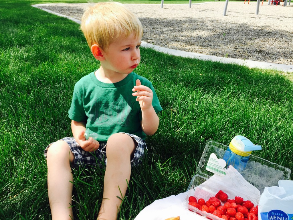 Hutch at Park Eating Raspberries